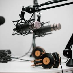 two grey condenser micrphones